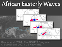 African Easterly Waves