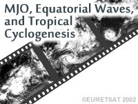 MJO, Equatorial Waves, and Tropical Cyclogenesis