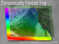 Dynamically Forced Fog