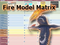 Fire Model Matrix