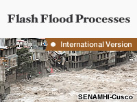 Flash Flood Processes: International Edition