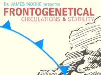 Frontogenetical Circulations and Stability