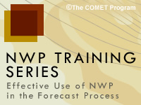 Effective Use of NWP in the Forecast Process: Introduction