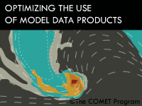 Optimizing the Use of Model Data Products