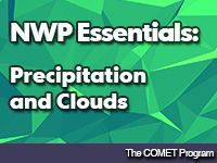 NWP Essentials: Precipitation and Clouds