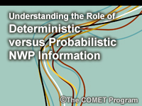 Understanding the Role of Deterministic versus Probabilistic NWP Information