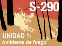 S-290 Unidad 1: Entorno del fuego