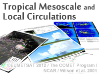 Tropical Mesoscale and Local Circulations